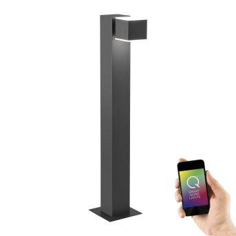 Borne lumineuse Paul Neuhaus Q-AMIN LED Anthracite, 2 lumières, Télécommandes, Changeur de couleurs