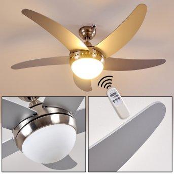 Ventilateurs de Plafond Morino Nickel mat, Argenté, 2 lumières, Télécommandes