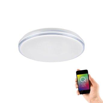 Plafonnier Paul Neuhaus Q-BENNO LED Chrome, 1 lumière, Télécommandes
