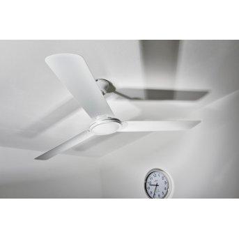 Ventilateur Globo FERRO Blanc, Télécommandes
