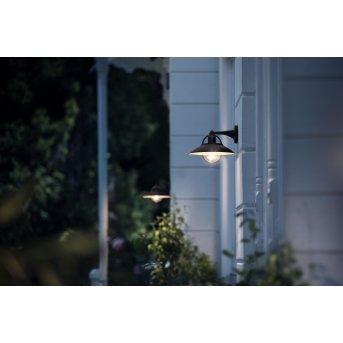 Applique murale d'extérieur Philips Cormorant Noir, 1 lumière