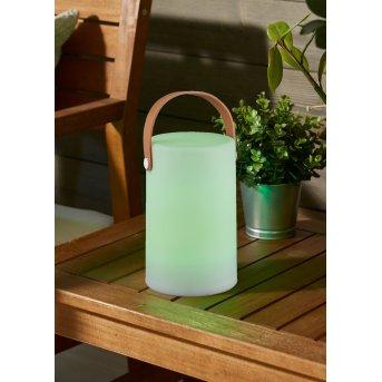 Lampe d'extérieur Reality ARUBA LED Blanc, 1 lumière, Changeur de couleurs