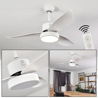 Ventilateur de plafond Doha LED Blanc, 1 lumière, Télécommandes