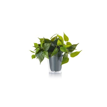 fleur Trio Plant LED Vert