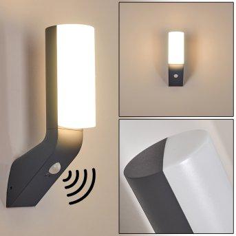 Applique murale d'extérieur Porus LED Anthracite, 1 lumière, Détecteur de mouvement