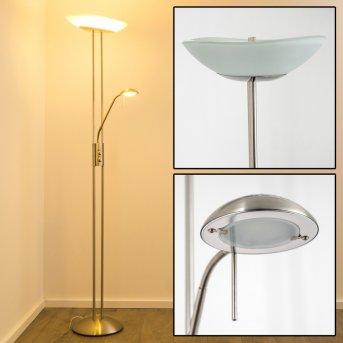 Lampadaire à vasque Lucca LED Acier inoxydable, 2 lumières