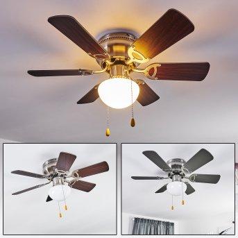 Ventilateur de plafond Trillo Nickel mat, Gris, Bois clair, 1 lumière